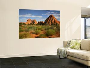 Desert Landscape and Rock Formations of Navajo Sandstone Near Devils Garden Trail by Ruth Eastham & Max Paoli