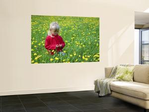 Girl Sitting in Dandelion Field Near Sr. Radovna by Ruth Eastham & Max Paoli