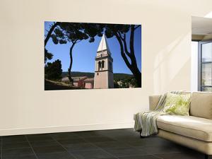 Pines with St Antony's Church (Crka Sveti Antun) by Ruth Eastham & Max Paoli