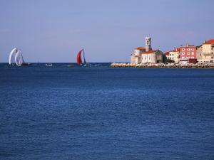 Sailing Boats Racing across Piran Bay Away from Rt Madona Headland by Ruth Eastham & Max Paoli