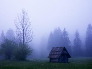 Wooden Barn and Trees with Dawn Mist Near Southern Shore of Lake Bohinj by Ruth Eastham & Max Paoli