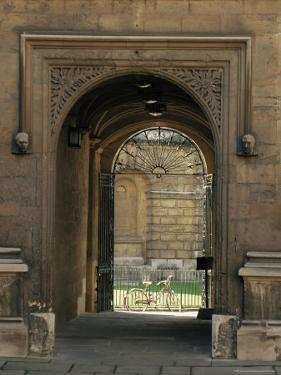 Archway Leading to the Bodleian Library, Oxford, Oxfordshire, England, United Kingdom by Ruth Tomlinson