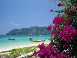 Boats Moored off Beach of Phi Phi Don Island, off Phuket, Thailand by Ruth Tomlinson