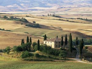 Farmhouse and Cypress Trees in the Early Morning, San Quirico d'Orcia, Tuscany, Italy by Ruth Tomlinson