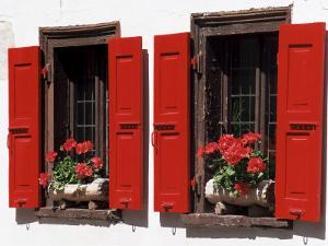 Red Shuttered Windows and Geraniums, Tasch, Near Zermatt, Valais, Switzerland by Ruth Tomlinson