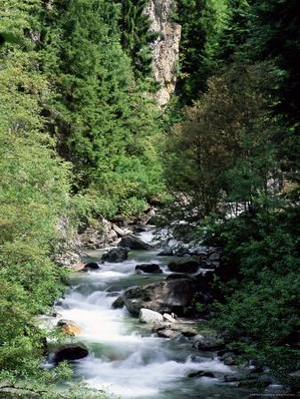 The Diosaz Gorge, Servoz Near Chamonix, Haute-Savoie, Rhone Alps, France by Ruth Tomlinson