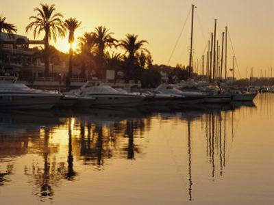 The New Marina, Cala d'Or, Majorca (Mallorca), Balearic Islands, Spain, Europe by Ruth Tomlinson