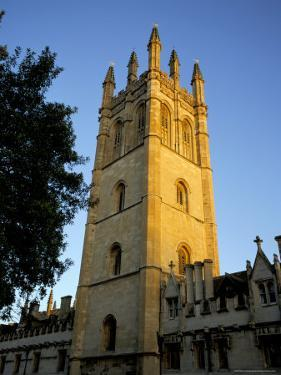 The Tower of Magdalen College at Sunrise, Oxford, Oxfordshire, England, United Kingdom by Ruth Tomlinson