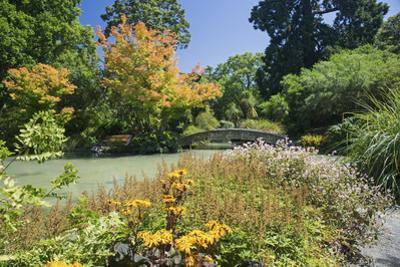 The Water Garden, Christchurch Botanic Gardens, Christchurch, Canterbury, South Island, New Zealand
