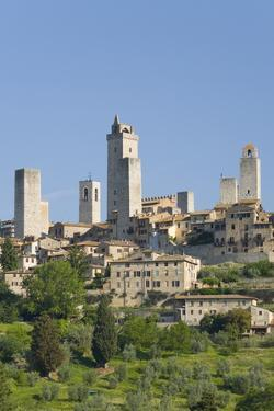 View across Field to Typical Houses and Medieval Towers, San Gimignano, Siena by Ruth Tomlinson