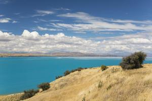 View across the turquoise waters of Lake Pukaki, near Twizel, Mackenzie district, Canterbury, South by Ruth Tomlinson