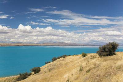 View across the turquoise waters of Lake Pukaki, near Twizel, Mackenzie district, Canterbury, South