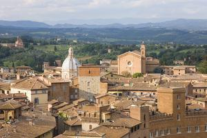 View over City Rooftops to Rolling Hills, the Basilica of San Francesco Prominent, Siena by Ruth Tomlinson