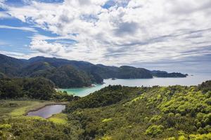 View over Torrent Bay from the Abel Tasman Coast Track, Abel Tasman National Park, near Marahau, Ta by Ruth Tomlinson