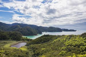 View over Torrent Bay from the Abel Tasman Coast Track, Abel Tasman National Park, near Marahau, Ta by Ruth Tomlinson