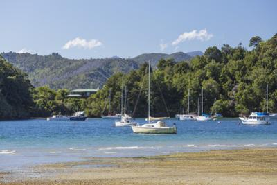 Yachts moored in the sheltered harbour, Ngakuta Bay, near Picton, Marlborough, South Island, New Ze