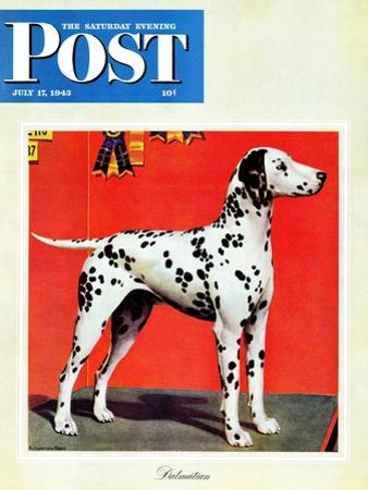 """""""Dalmatians,"""" Saturday Evening Post Cover, July 17, 1943 by Rutherford Boyd"""