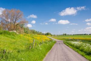 Colorful Landscape in Springtime by Ruud Morijn