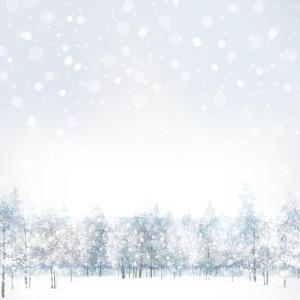 Vector of Winter Scene with Forest Background. by rvika