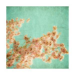 Fleurish I by Ryan Hartson-Weddle