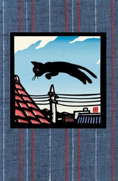 Flying Kitty by Ryo Takagi