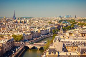 View on Paris Form Notre Dame Cathedral by S Borisov