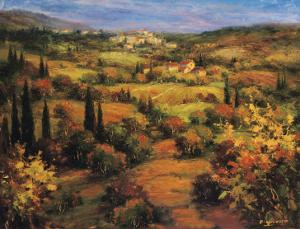 Umbria Panorama by S. Hinus