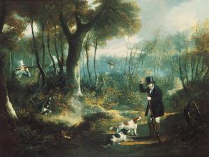 Pheasant Shooting in the Forest by S .j .e . Jones
