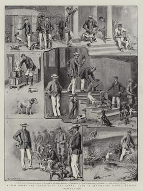 A New Hobby for School-Boys, the Kennel Club at Clayesmore School, Enfield by S.t. Dadd