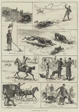 Coursing-Matches by S.t. Dadd
