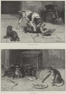 Dogs and Food by S.t. Dadd