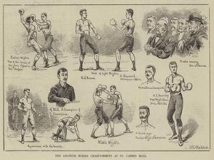 The Amateur Boxing Championships at St James's Hall by S.t. Dadd
