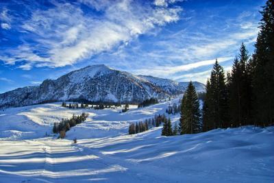 Alpine Winter Landscape, Austria, Europe