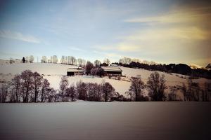 An Austrian Farm in the Wintertime, Austria, Europe by Sabine Jacobs