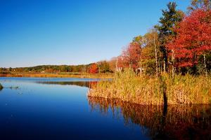 Calm Lake in New England, Connecticut, Usa by Sabine Jacobs