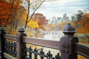 The Lake in Central Park, Manhattan, New York City by Sabine Jacobs