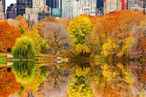 The Pond in Central Park, Manhattan, New York City by Sabine Jacobs