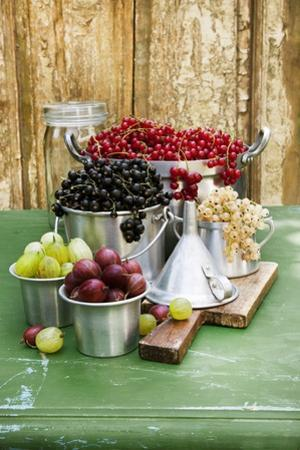 A Still Life of Currants and Gooseberries in Assorted Aluminium Containers by Sabine Löscher
