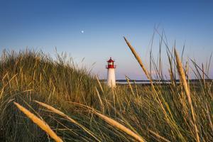 Lighthouse List West, Sylt Island, Northern Frisia, Schleswig-Holstein, Germany by Sabine Lubenow