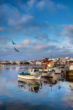 View from Fishing Harbour Towards Old Town, Lagos, Algarve, Portugal by Sabine Lubenow