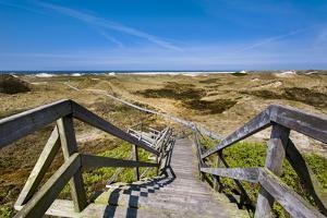 Wodden Path in the Dunes, Amrum Island, Northern Frisia, Schleswig-Holstein, Germany by Sabine Lubenow