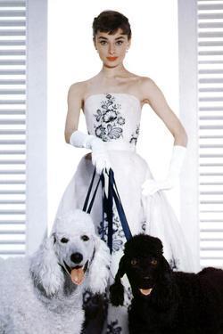 Sabrina, Audrey Hepburn, 1954