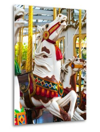 Carousel Horses at Yerba Buena Center for the Arts by Sabrina Dalbesio