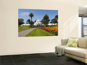 Conservatory of Flowers in Golden Gate Park by Sabrina Dalbesio