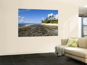 Kawela Coastline at Low Tide by Sabrina Dalbesio