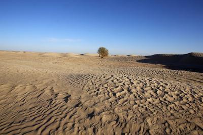 https://imgc.allpostersimages.com/img/posters/sahara-landscape-douz-kebili-tunisia-north-africa-africa_u-L-PNGGTG0.jpg?p=0