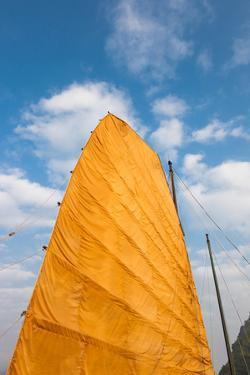 Sail of a boat, Ha Long Bay, Quang Ninh Province, Vietnam