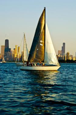 Sailboat in a Lake, Lake Michigan, Chicago, Cook County, Illinois, USA