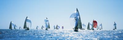 Sailboat Race, Key West Florida, USA