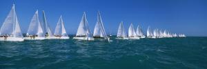 Sailboat Racing in the Ocean, Key West, Florida, USA